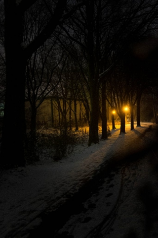 1601_Fuji_XE2_Winter16_24940.jpg